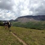 The Trail in Cataract Gulch